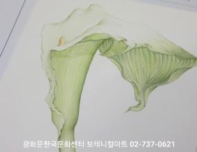 광화문한국문화센터 보테니컬아트  02-737-0621    보테니컬아트는  색연필로그리는 식물세밀화입니다  